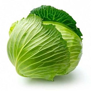 Cabbage Green, Organic by the pound