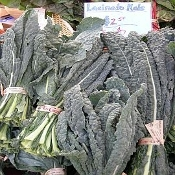 Lettuces- Kale, Lacinato (Dinosaur), by the bunch