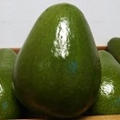 Avocado, Florida Organic individually priced