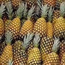 Pineapple Organic per fruit