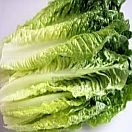 Lettuce Romaine Organic individually priced