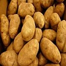 Potatoes Russet Organic (5 lb Bag)