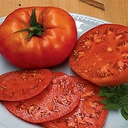 Tomatoes  Beefsteak Organic by the pound